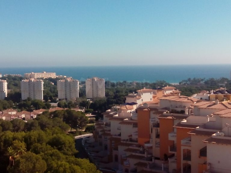 New - Apartment - Orihuela Costa - Dehesa de Campoamor